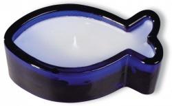 Kerzenglasfisch, blaues Glas